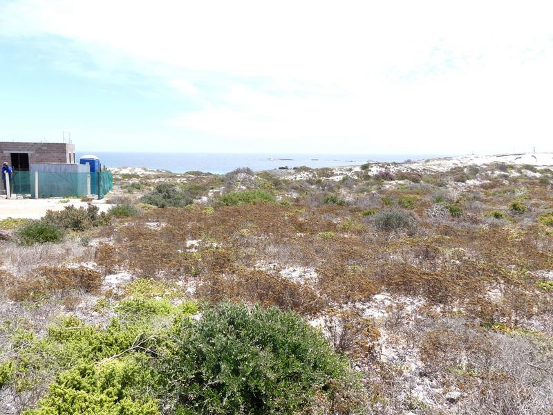 Property For Sale in Cape St Martin Private Reserve, St Helena Bay 20